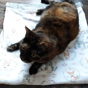 🐱Cat burrow bag cat mat🐱